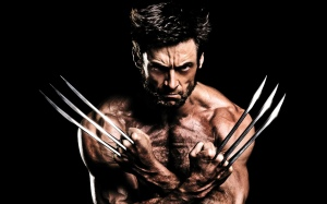 2013_the_wolverine-wide